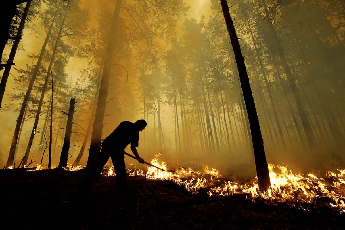 Удесяти областях України очікується надзвичайна пожежна небезпека