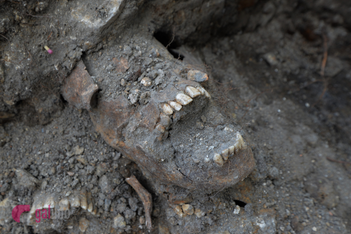 Розкопки на площі Галицькій у Львові. Фото Олена Ляхович, Гал-інфо