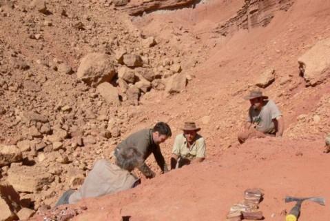 Вчені знайшли найдавніші останки Homo sapiens