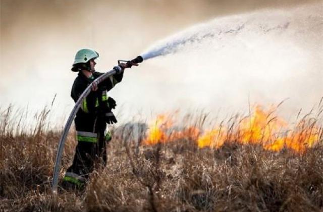 Попри заборону, на Прикарпатті масово спалюють суху траву