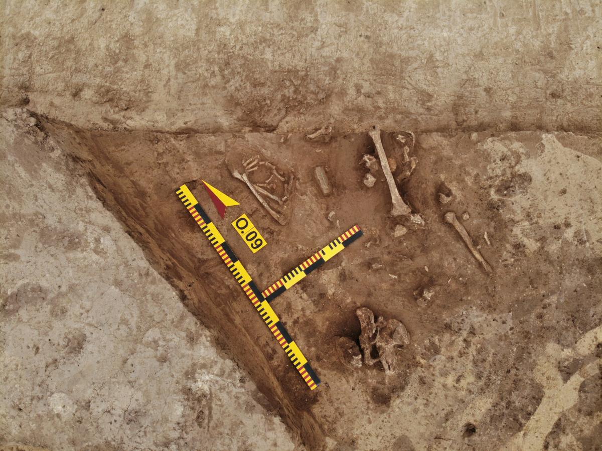 Пограбоване доросле сарматське поховання (ІІ-ІІІ ст. н.е.). Фото - РАС.