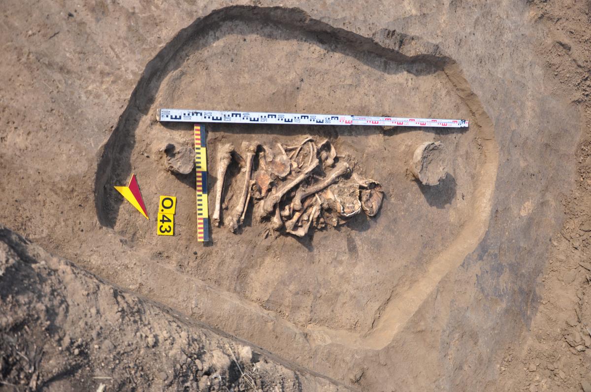 Поховання з посмертним розчленуванням кістяків (XI-IX ст. до н. е.). Фото - РАС.