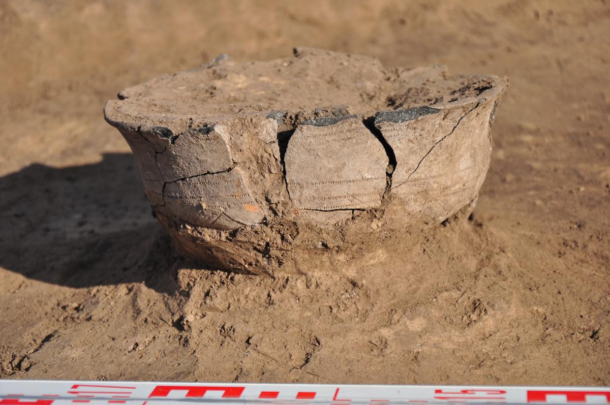 Посудина з накольчастим орнаментом (XI-IX ст. до н. е.). Фото - РАС.