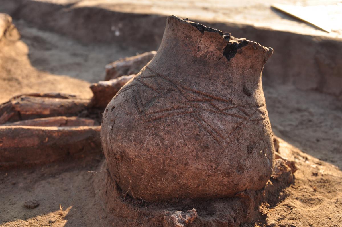 Орнаментована посудина (XI-IX ст. до н. е.). Фото - РАС.