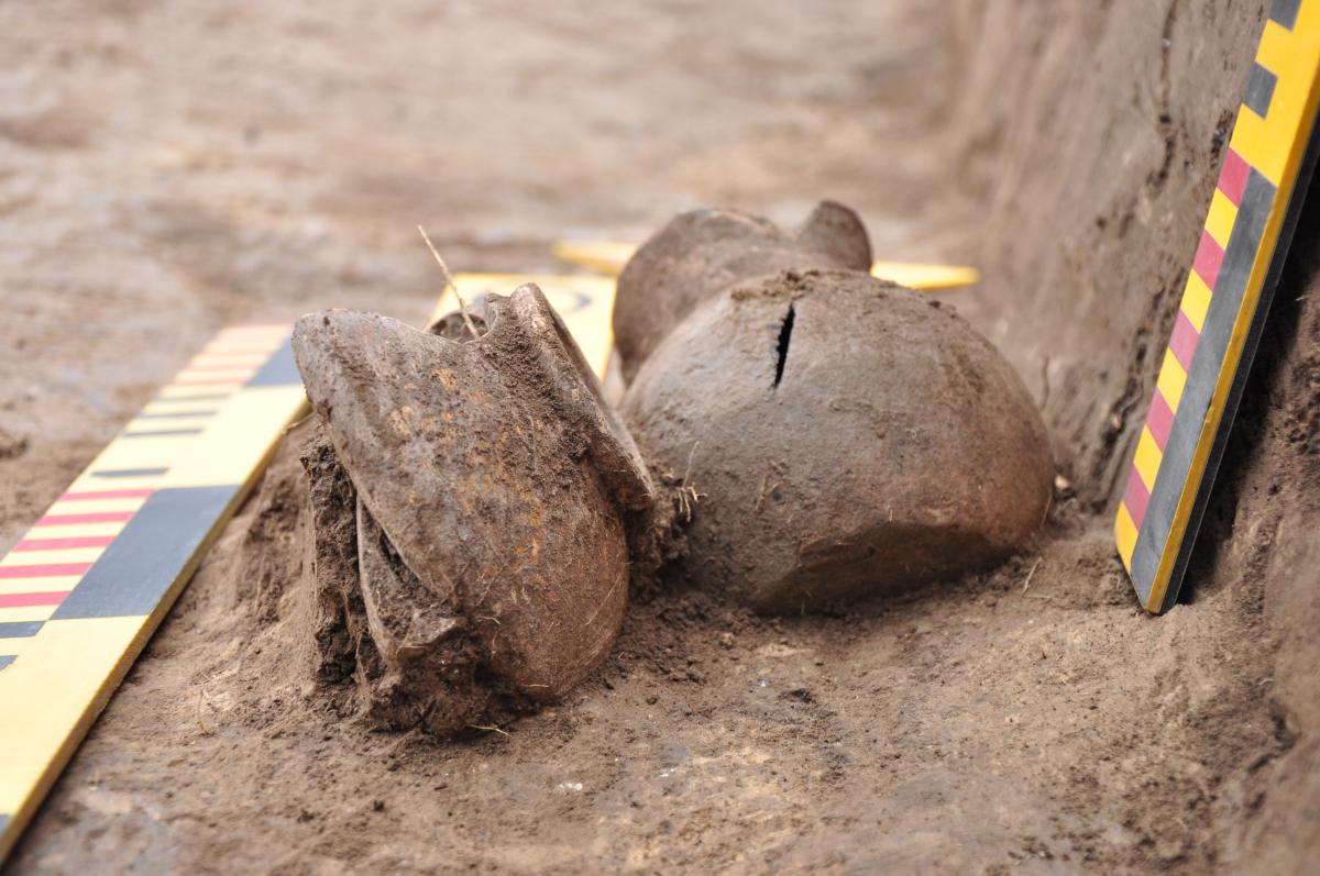 Супровідний матеріал дитячого сарматського поховання з кургану. Фото - РАС.