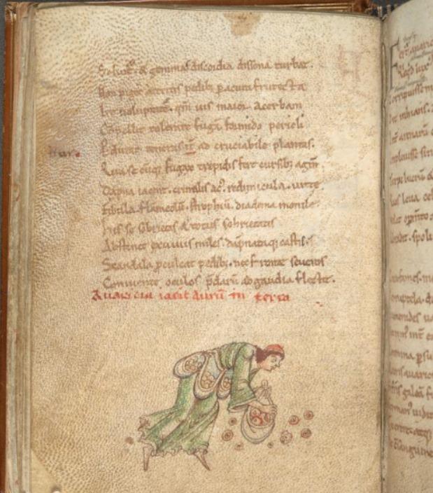 Ілюстрація до «Психомахії» Пруденція. Жадібність увішана торбами з грошима. XII – XIII ст. Cotton MS Titus D XVI. Фото - Symbolon.