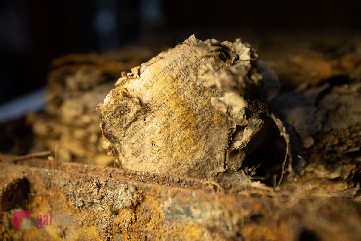 """""""Молочний"""" бідон та ящик від німецьких мін: у лісі знайшли ще два архіви УПА"""